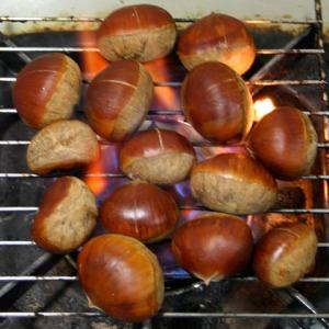 yakiguri-gohan-roasted-chestnut-rice-12